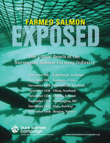 Farmed Salmon Exposed