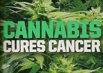 Run from the Cure - Cannabis Cancer Cure